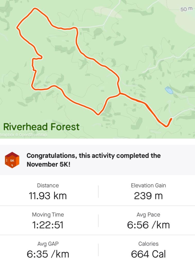 Screenshot showing an 11.93km run in 82m 51s, averaging just under 7min/km.